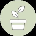 ontwikkeling_icon